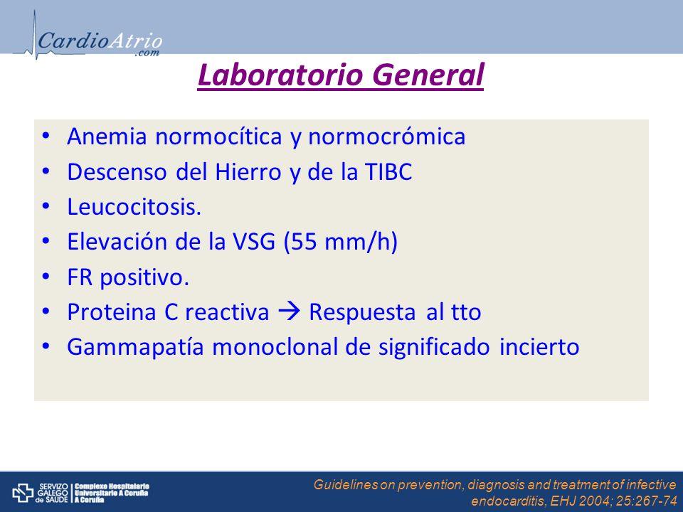 Laboratorio General Anemia normocítica y normocrómica