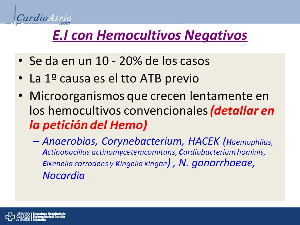 E.I con Hemocultivos Negativos