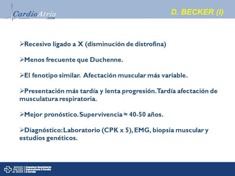 D. BECKER (I) Recesivo ligado a X (disminución de distrofina)