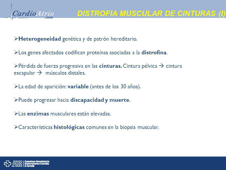 DISTROFIA MUSCULAR DE CINTURAS (I)