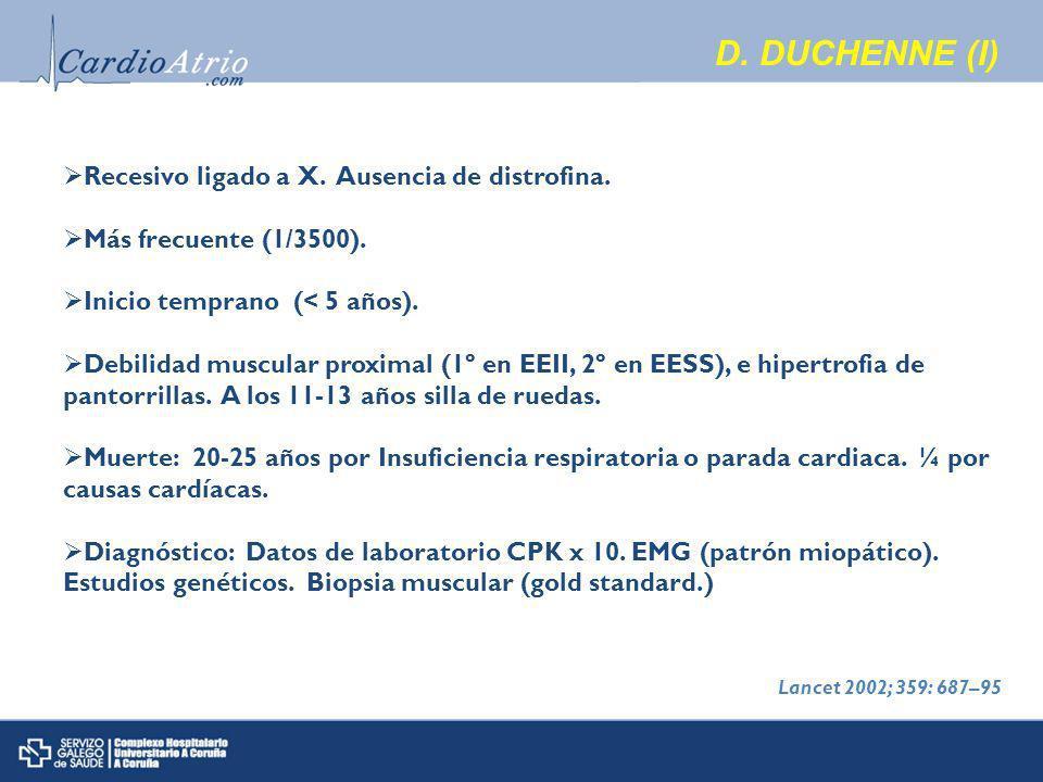 D. DUCHENNE (I) Recesivo ligado a X. Ausencia de distrofina.