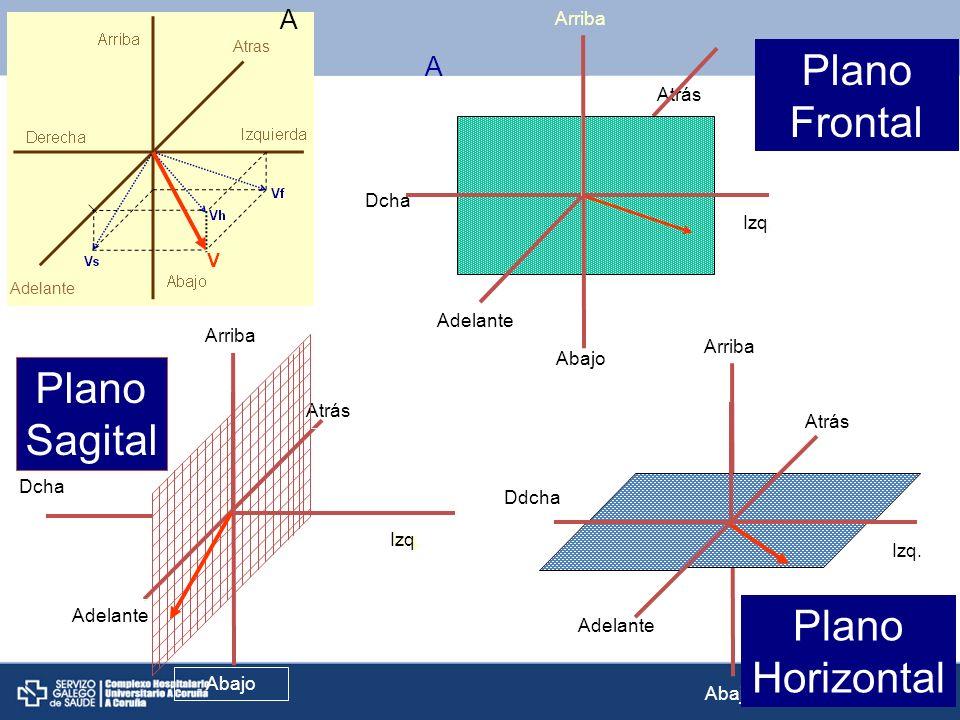 Plano Frontal Plano Sagital Plano Horizontal C A A Abajo Arriba Dcha