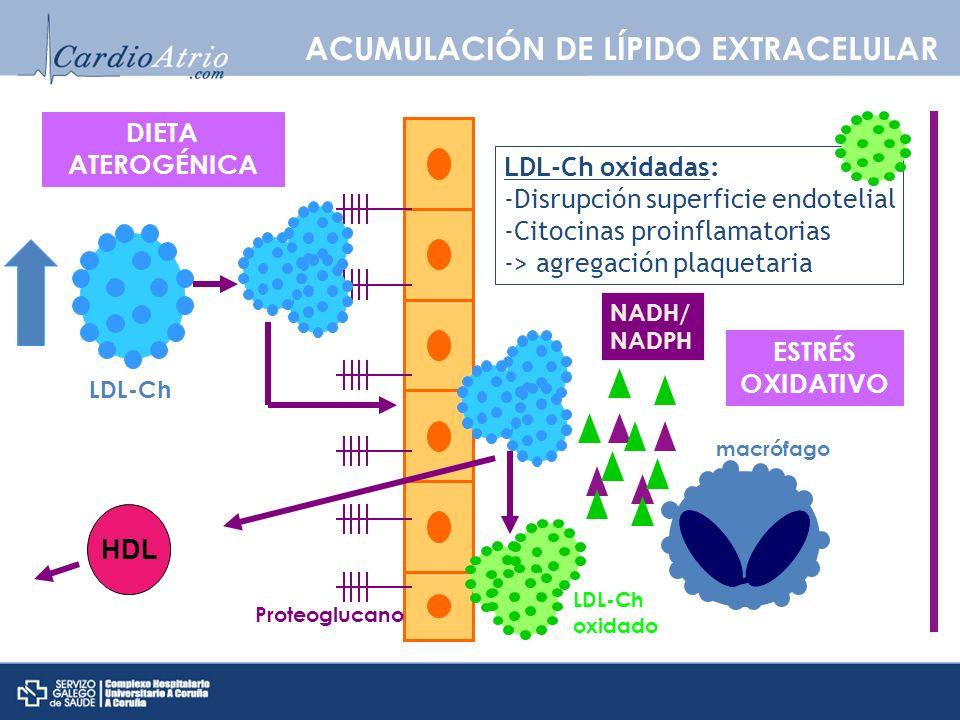 ACUMULACIÓN DE LÍPIDO EXTRACELULAR