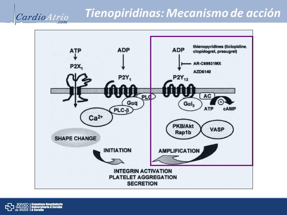 Tienopiridinas: Mecanismo de acción