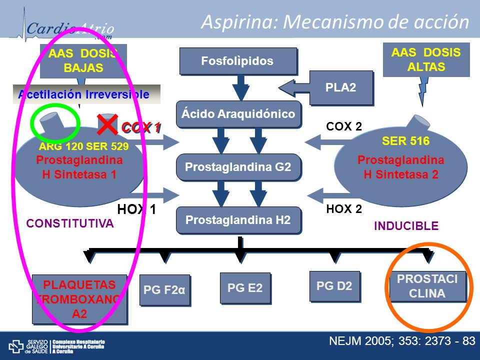 Aspirina: Mecanismo de acción