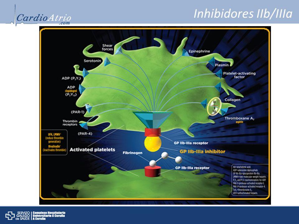 Inhibidores IIb/IIIa