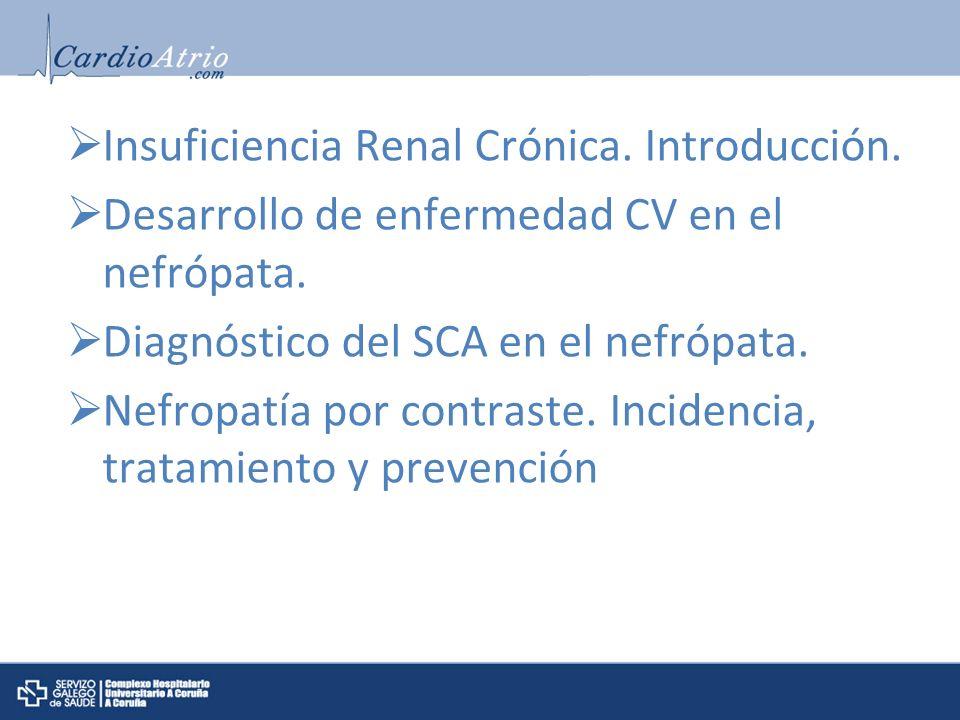 Insuficiencia Renal Crónica. Introducción.