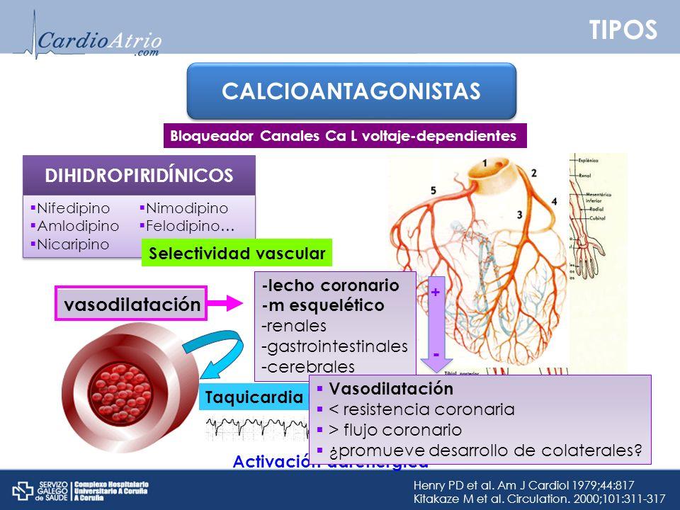 TIPOS CALCIOANTAGONISTAS DIHIDROPIRIDÍNICOS vasodilatación -