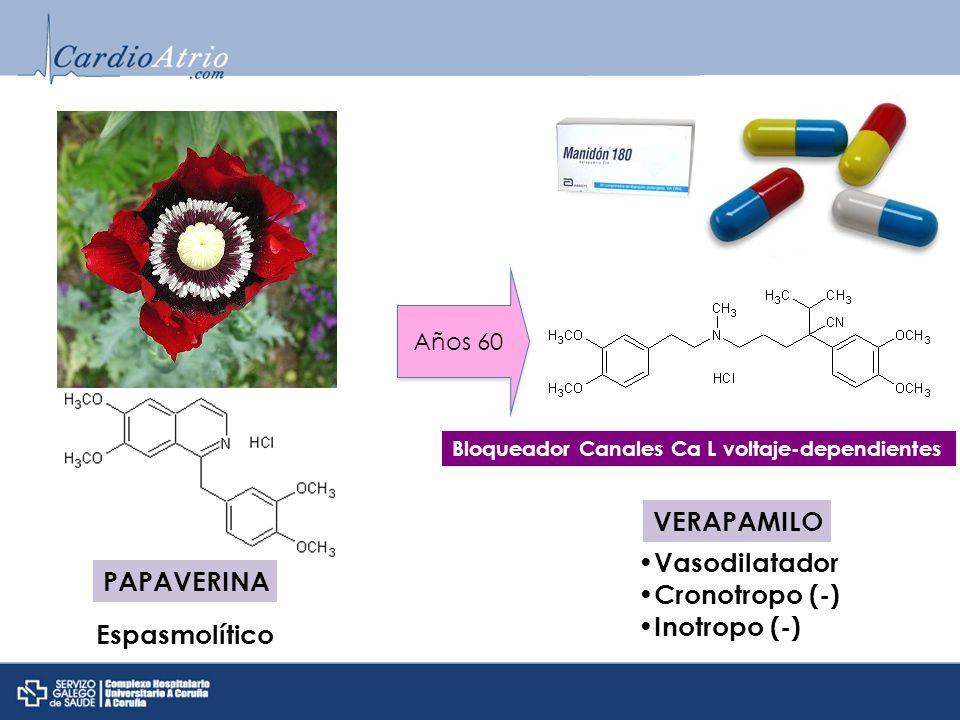 VERAPAMILO Vasodilatador PAPAVERINA Cronotropo (-) Inotropo (-)