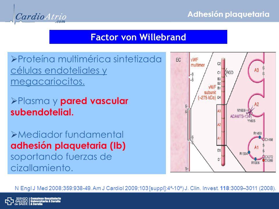 Plasma y pared vascular subendotelial.