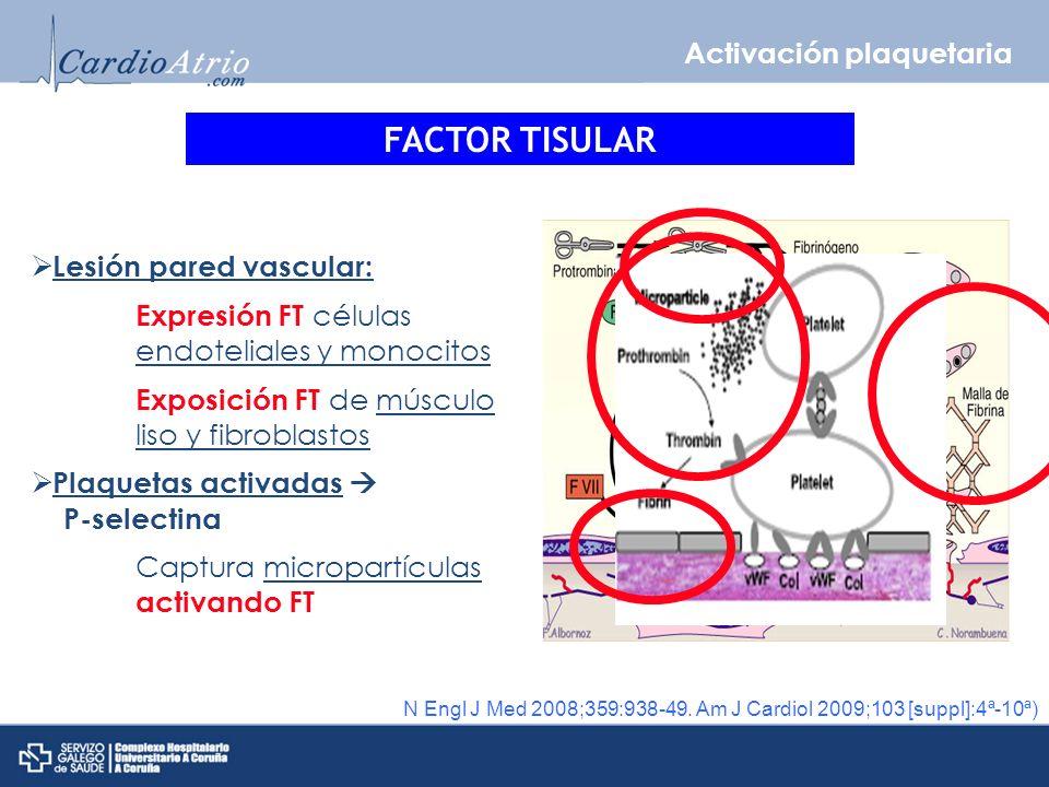 FACTOR TISULAR Activación plaquetaria Lesión pared vascular: