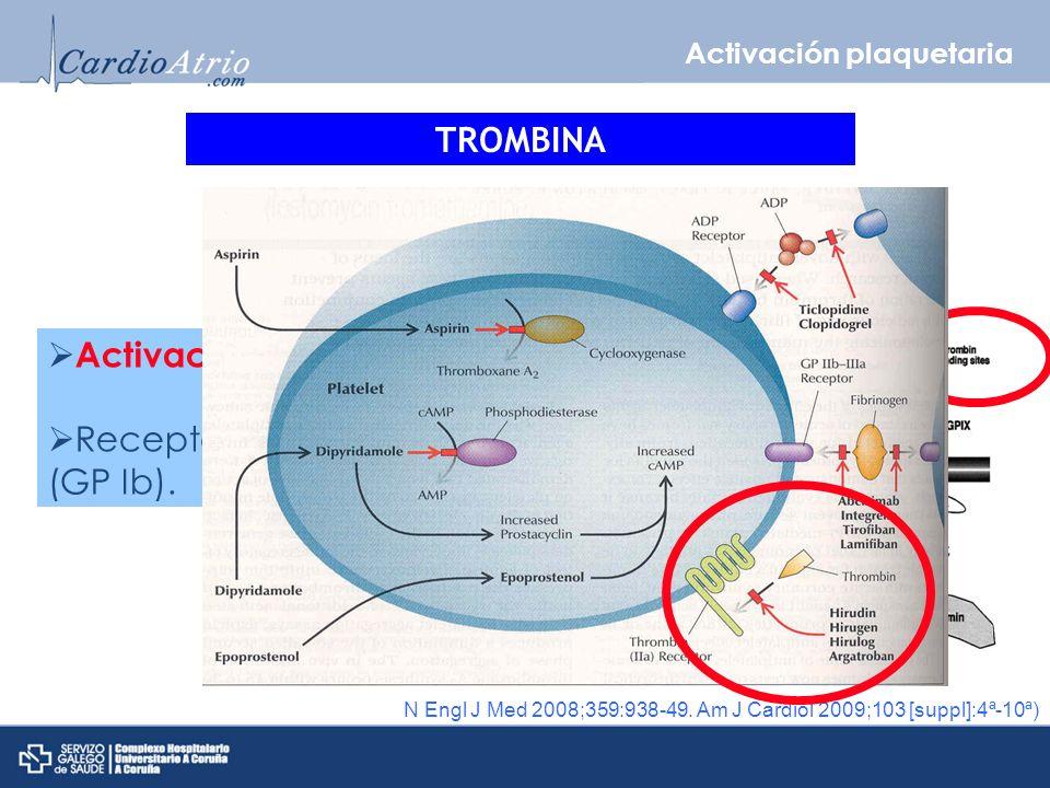 Activación plaquetaria Receptores PAR-1 y PAR-2 (GP Ib).