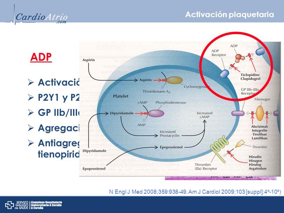 ADP Activación plaquetaria P2Y1 y P2Y12 GP IIb/IIIa