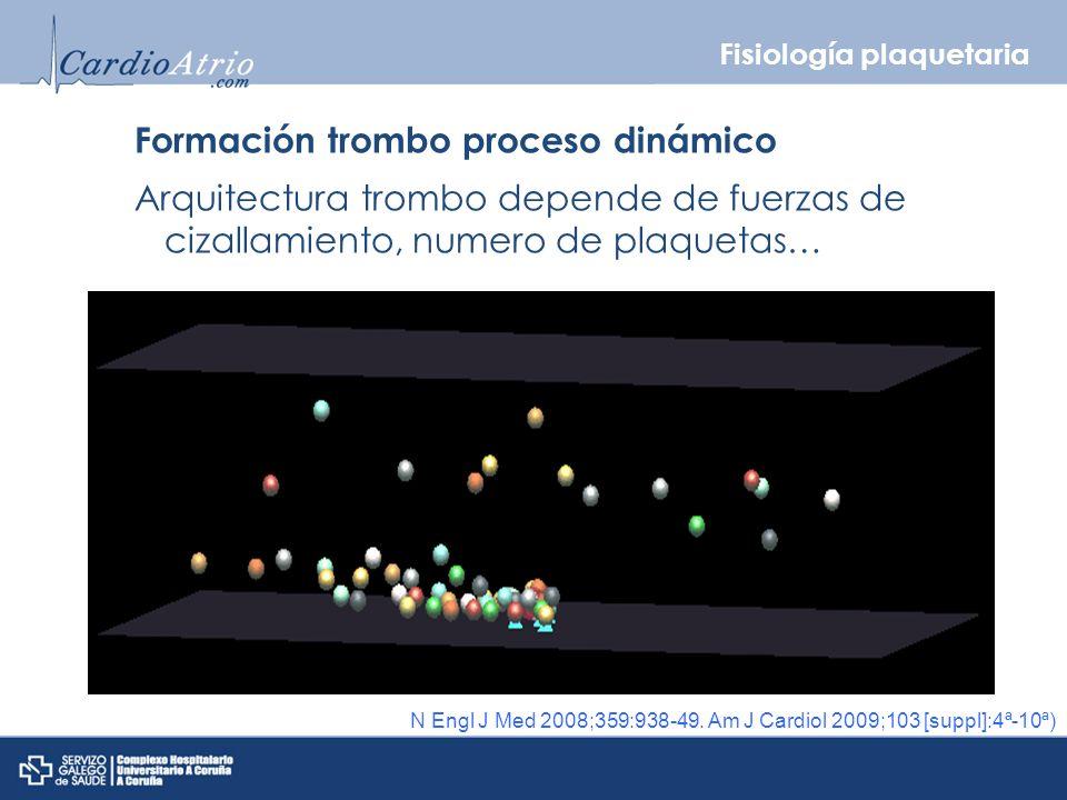 Formación trombo proceso dinámico