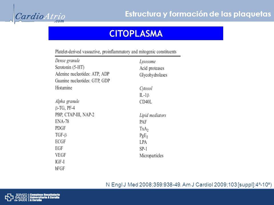 CITOPLASMA Estructura y formación de las plaquetas