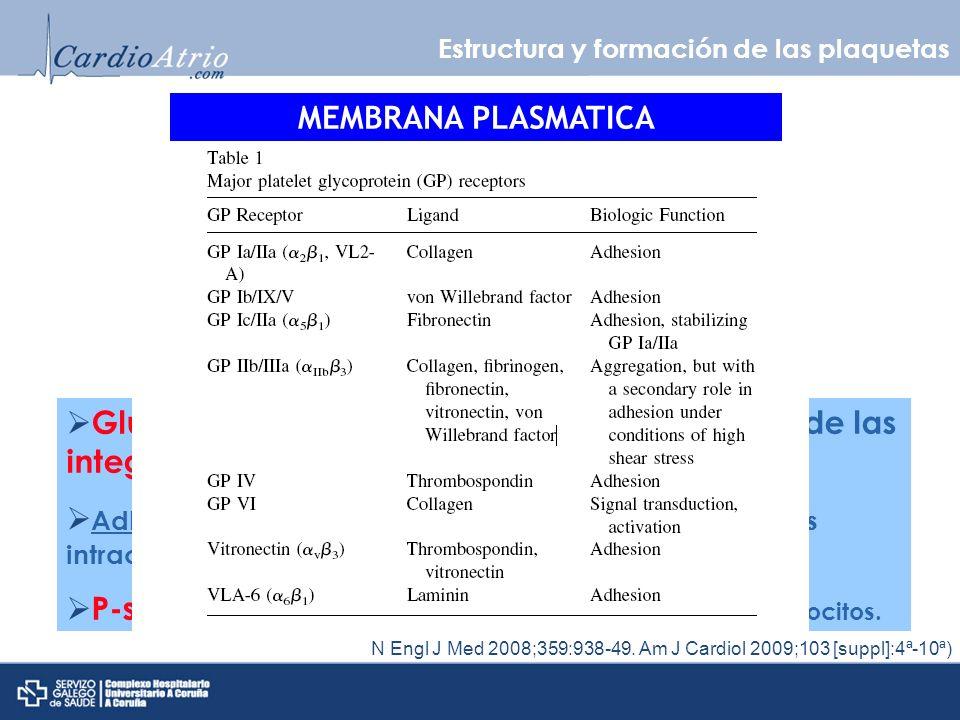 Glucoproteínas heterodimericas de la familia de las integrinas.