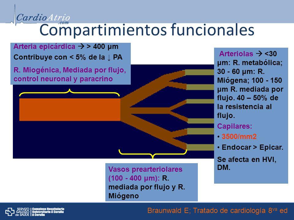Compartimientos funcionales