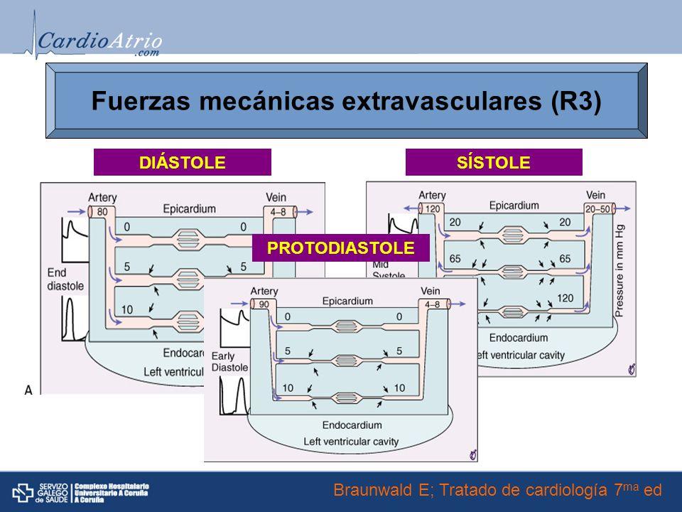 Fuerzas mecánicas extravasculares (R3)