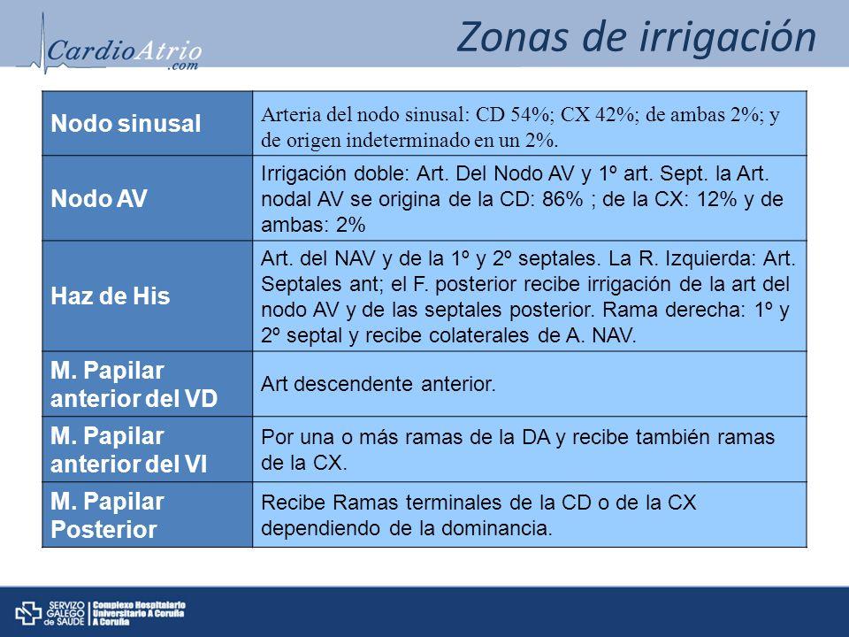 Zonas de irrigación Nodo sinusal Nodo AV Haz de His