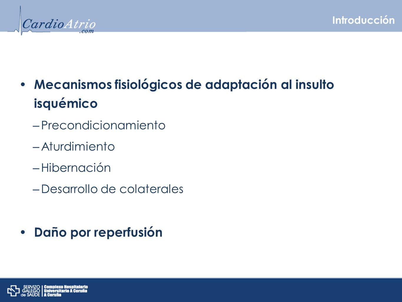 Mecanismos fisiológicos de adaptación al insulto isquémico