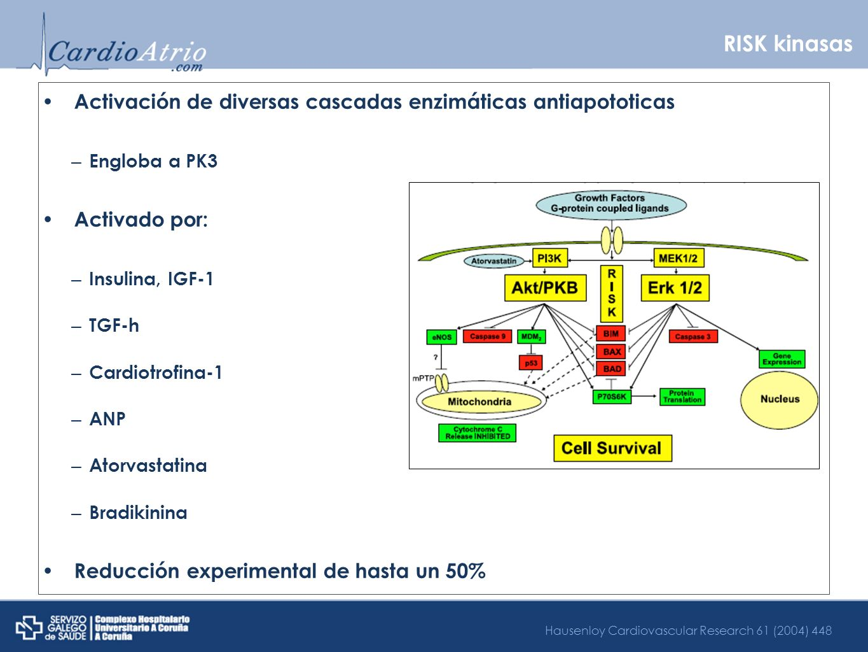 RISK kinasas Activación de diversas cascadas enzimáticas antiapototicas. Engloba a PK3. Activado por: