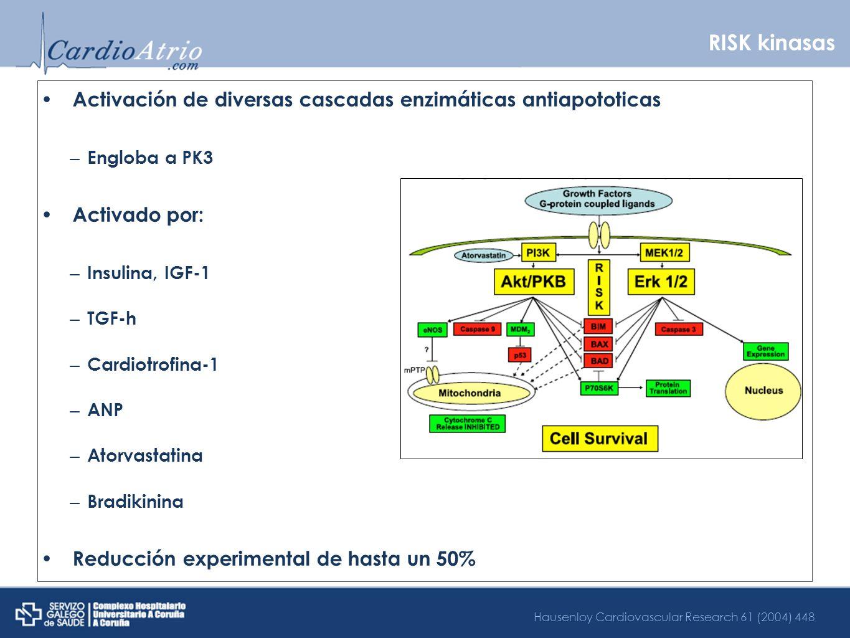 RISK kinasasActivación de diversas cascadas enzimáticas antiapototicas. Engloba a PK3. Activado por: