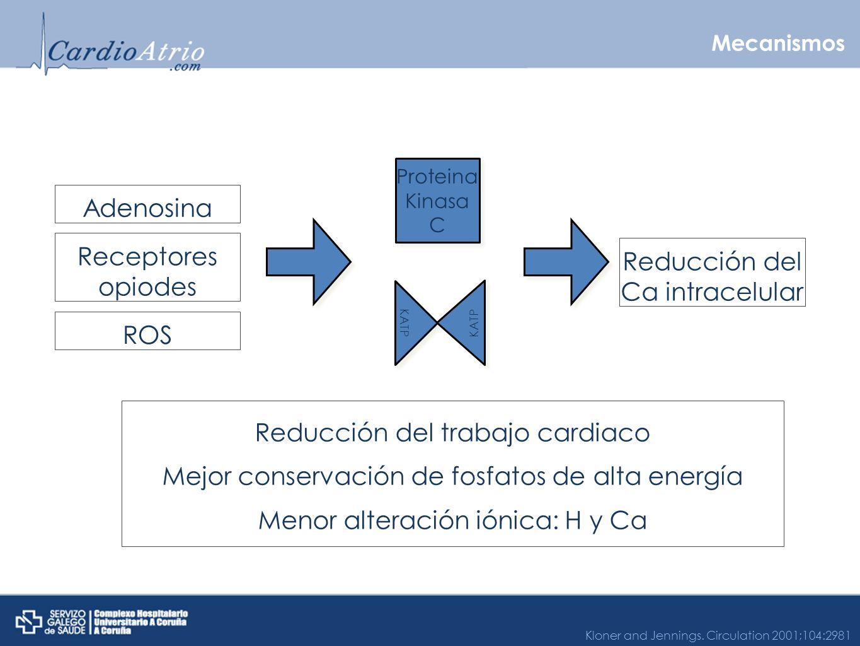 Reducción del Ca intracelular