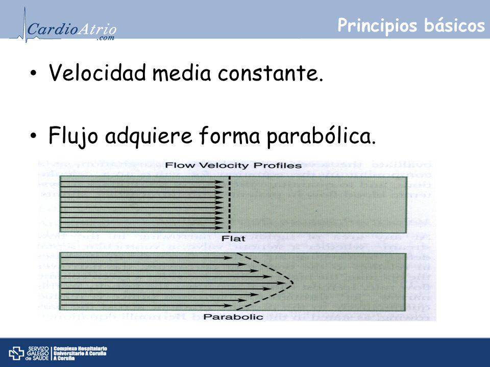 Velocidad media constante. Flujo adquiere forma parabólica.