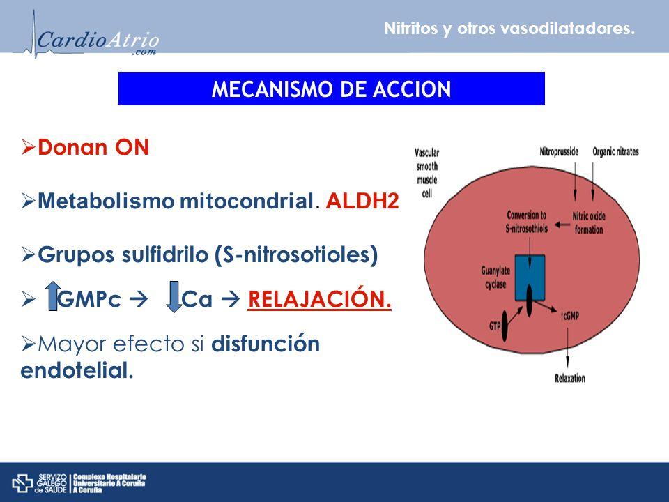 Metabolismo mitocondrial. ALDH2 Grupos sulfidrilo (S-nitrosotioles)