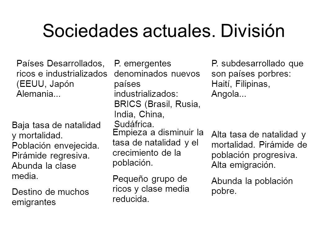 Sociedades actuales. División