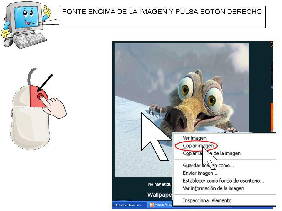 PONTE ENCIMA DE LA IMAGEN Y PULSA BOTÓN DERECHO