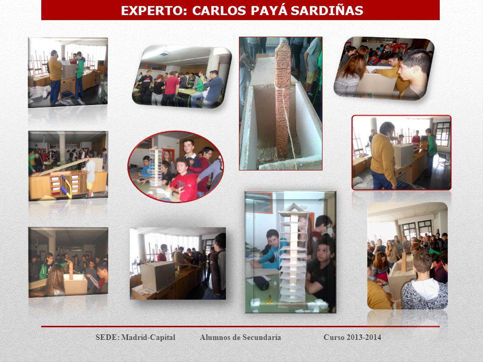 EXPERTO: CARLOS PAYÁ SARDIÑAS