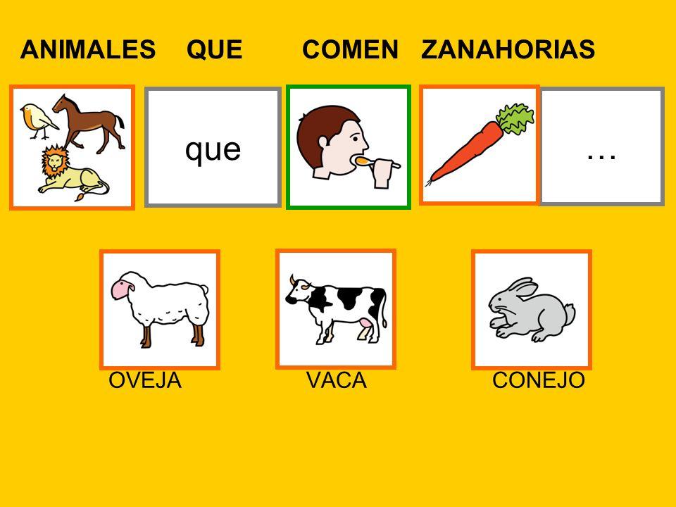 ANIMALES QUE COMEN ZANAHORIAS …