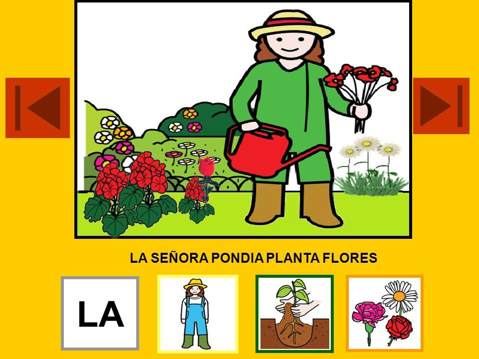 LA SEÑORA PONDIA PLANTA FLORES