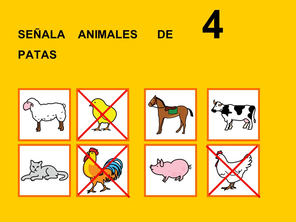SEÑALA ANIMALES DE 4 PATAS