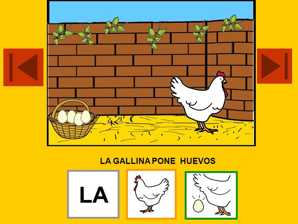 LA GALLINA PONE HUEVOS LA