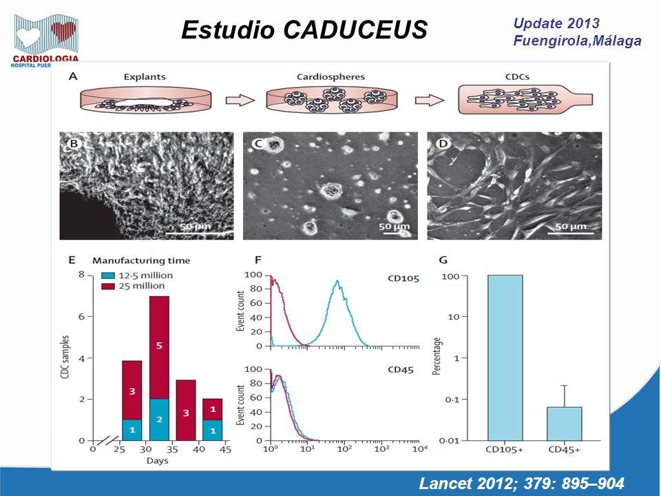 Estudio CADUCEUS FE 25-45% 39%M IAM 2-4 semanas 24% escara