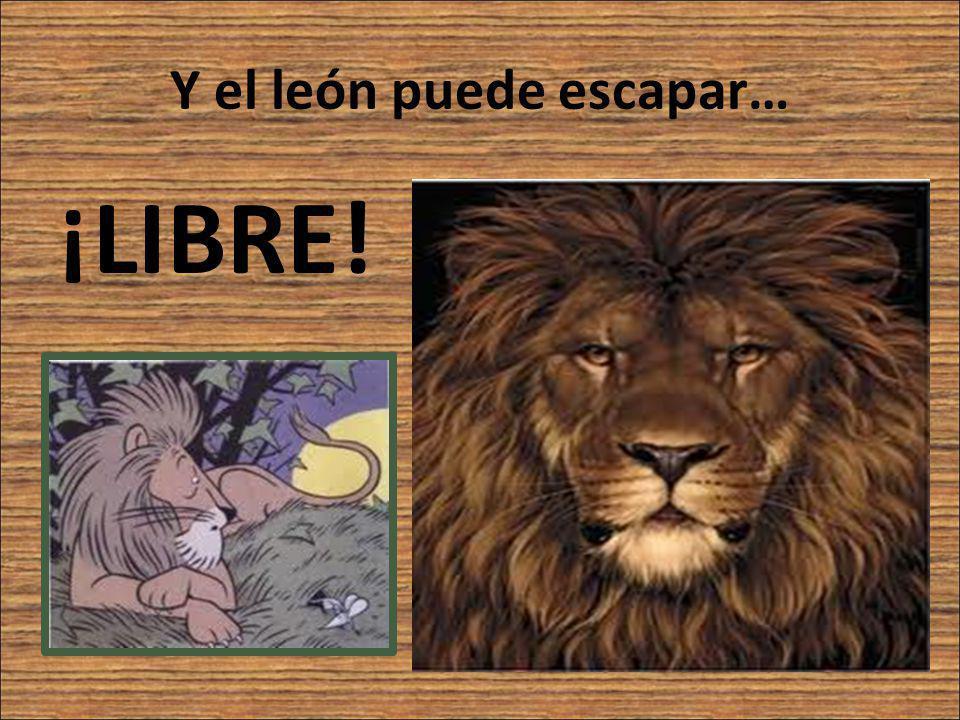Y el león puede escapar…