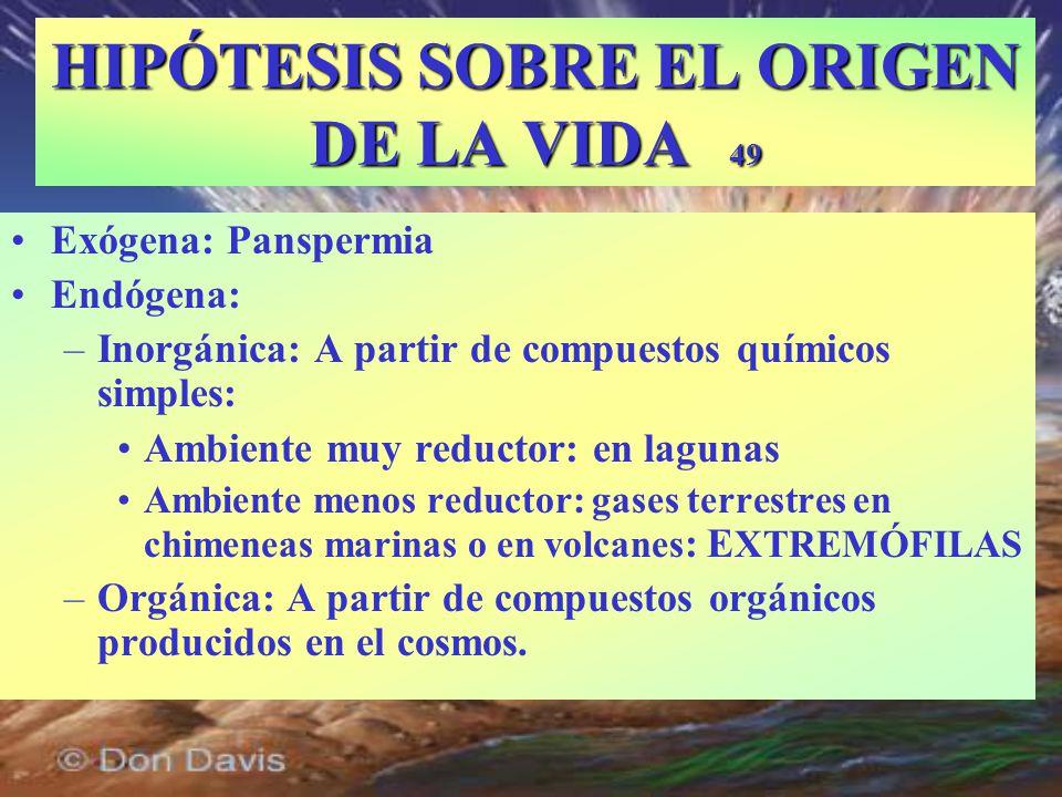 HIPÓTESIS SOBRE EL ORIGEN DE LA VIDA 49