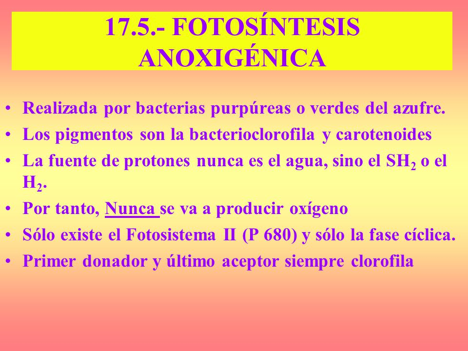 17.5.- FOTOSÍNTESIS ANOXIGÉNICA