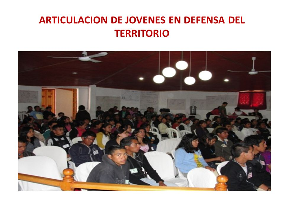 ARTICULACION DE JOVENES EN DEFENSA DEL TERRITORIO