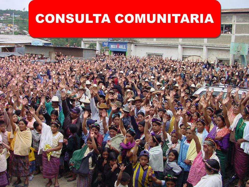 CONSULTA COMUNITARIA CONSULTA COMUNITARIA