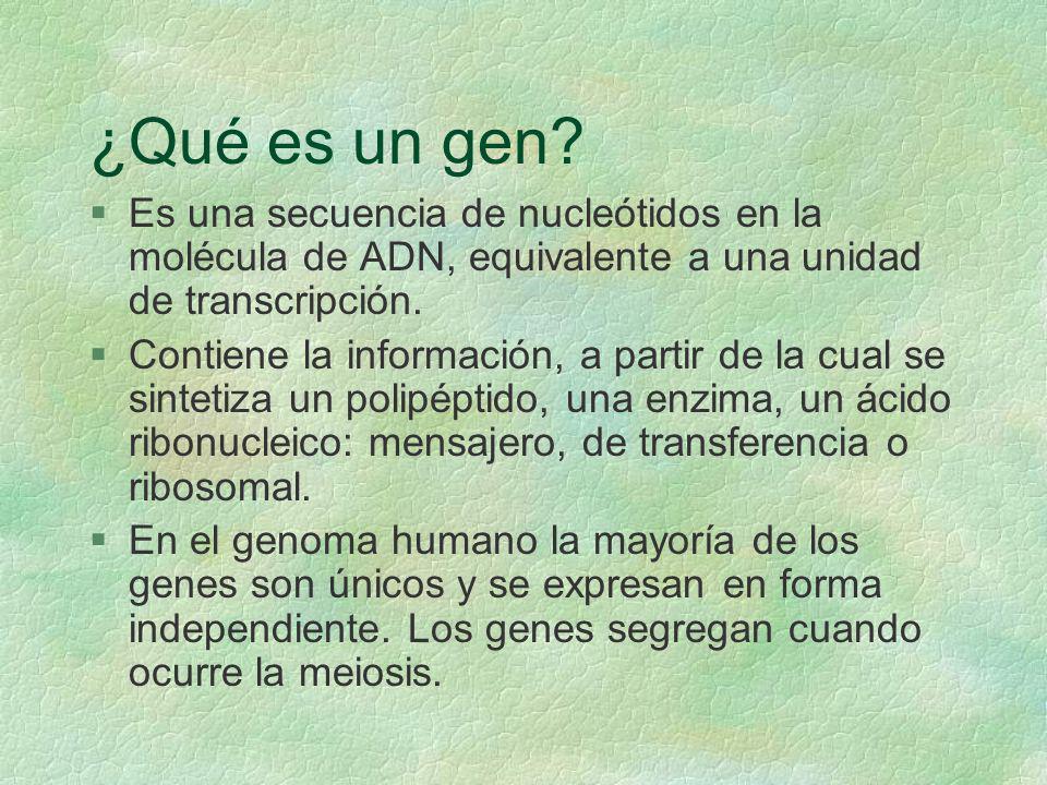 ¿Qué es un gen Es una secuencia de nucleótidos en la molécula de ADN, equivalente a una unidad de transcripción.