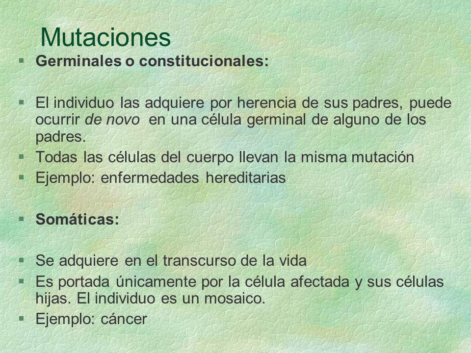 Mutaciones Germinales o constitucionales: