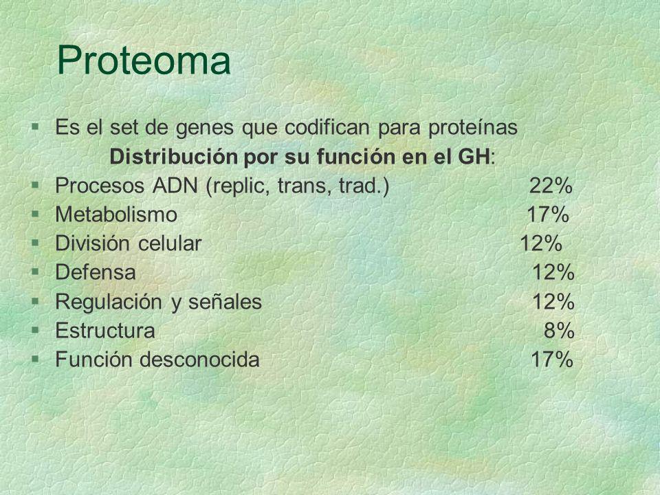Proteoma Es el set de genes que codifican para proteínas