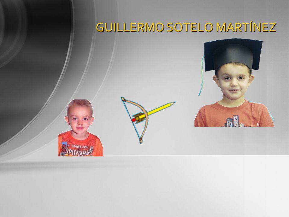 GUILLERMO SOTELO MARTÍNEZ