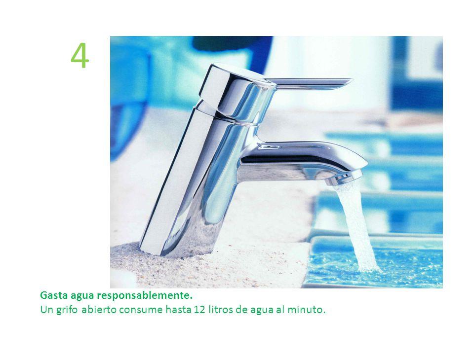 4 Gasta agua responsablemente.