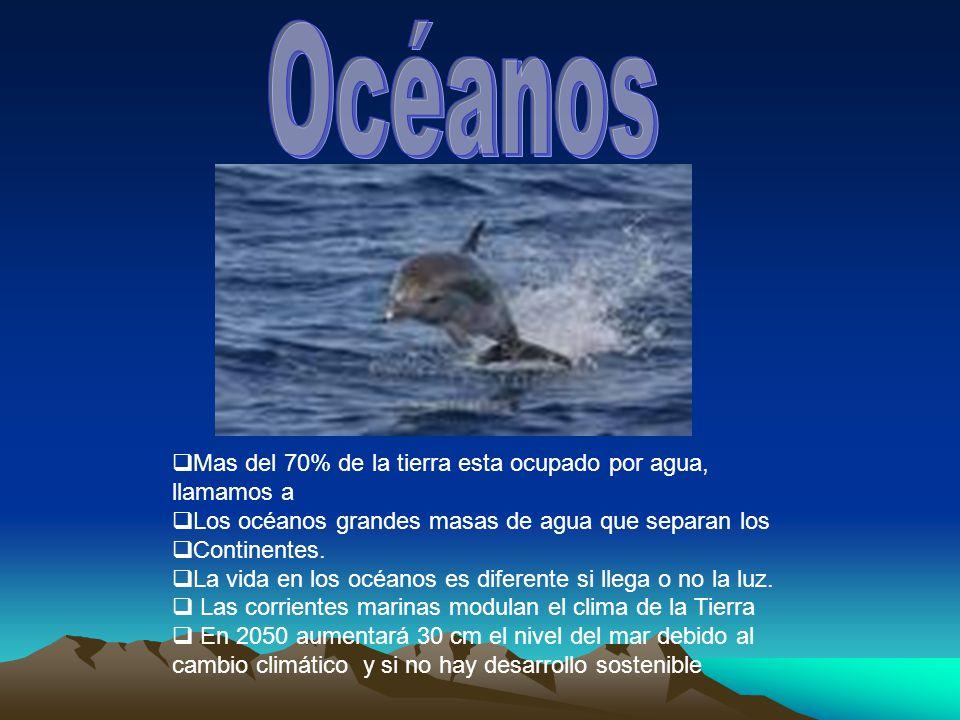 Océanos Mas del 70% de la tierra esta ocupado por agua, llamamos a
