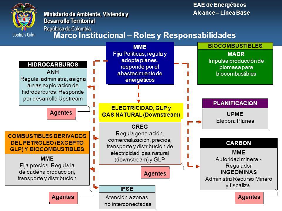 Marco Institucional – Roles y Responsabilidades