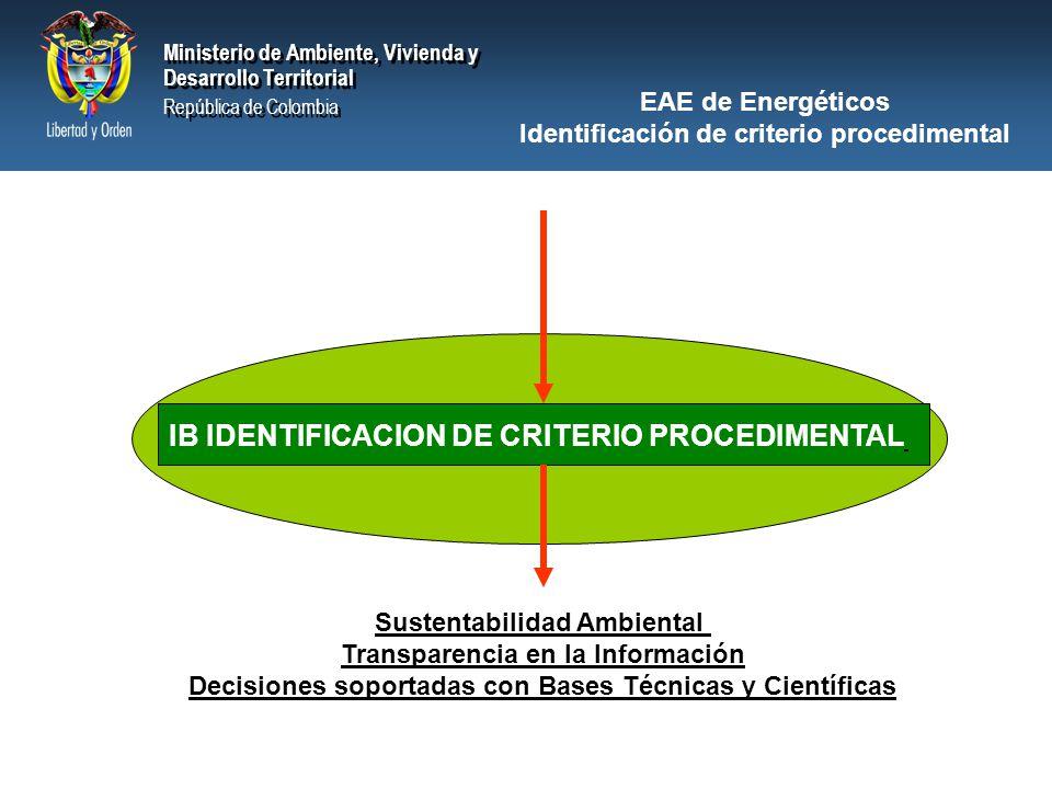 IB IDENTIFICACION DE CRITERIO PROCEDIMENTAL